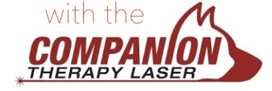 Abbey Animal Hospital- Virginia Beach, VA: Companion Laser Therapy