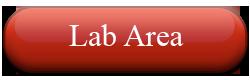 Abbey Animal Hospital- Virginia Beach, VA: Lab Area