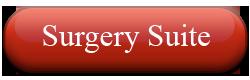 Abbey Animal Hospital- Virginia Beach, VA: Surgery Suite